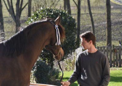 Louis & Bombon