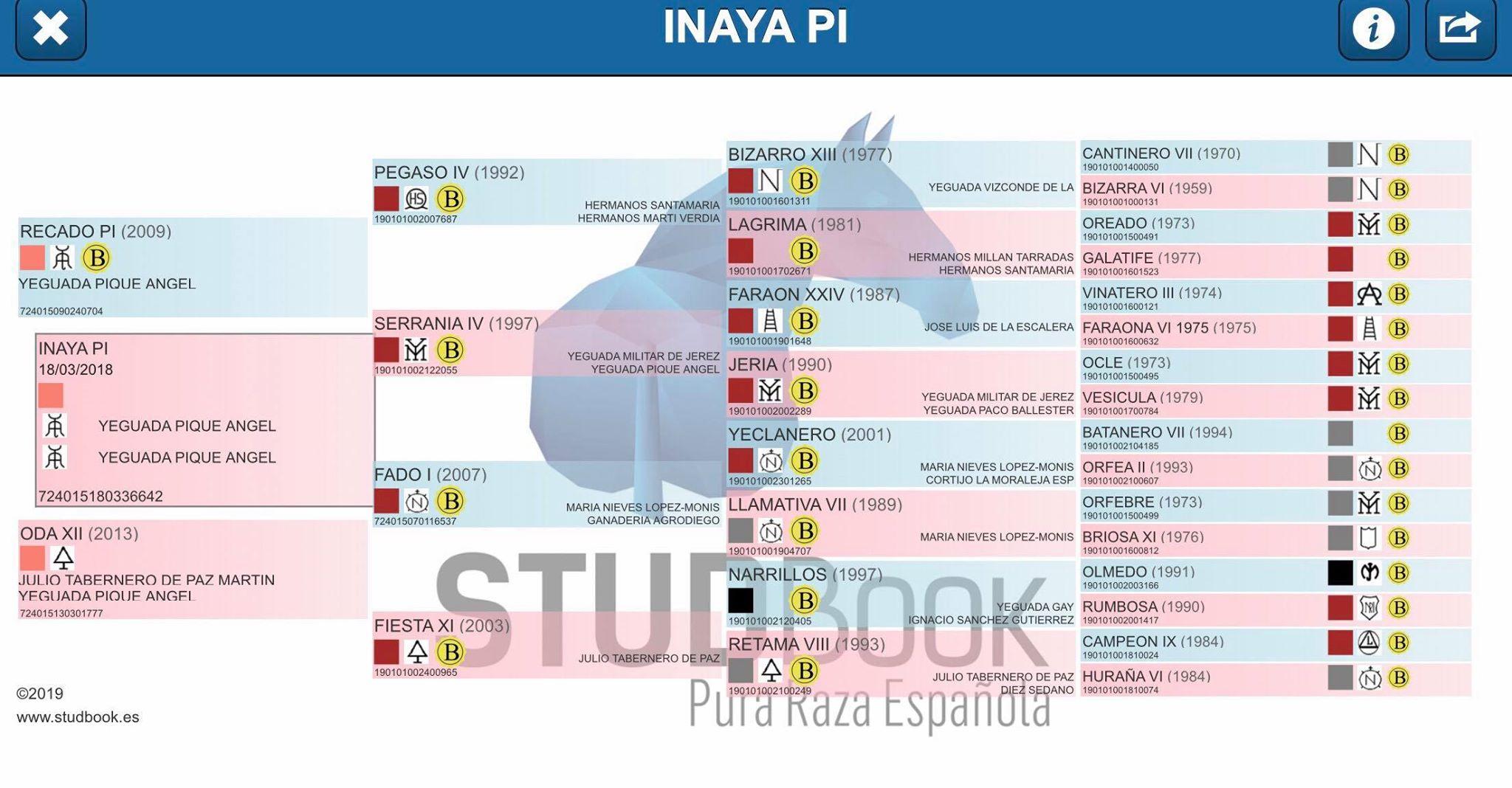 Origines Inaya Pi