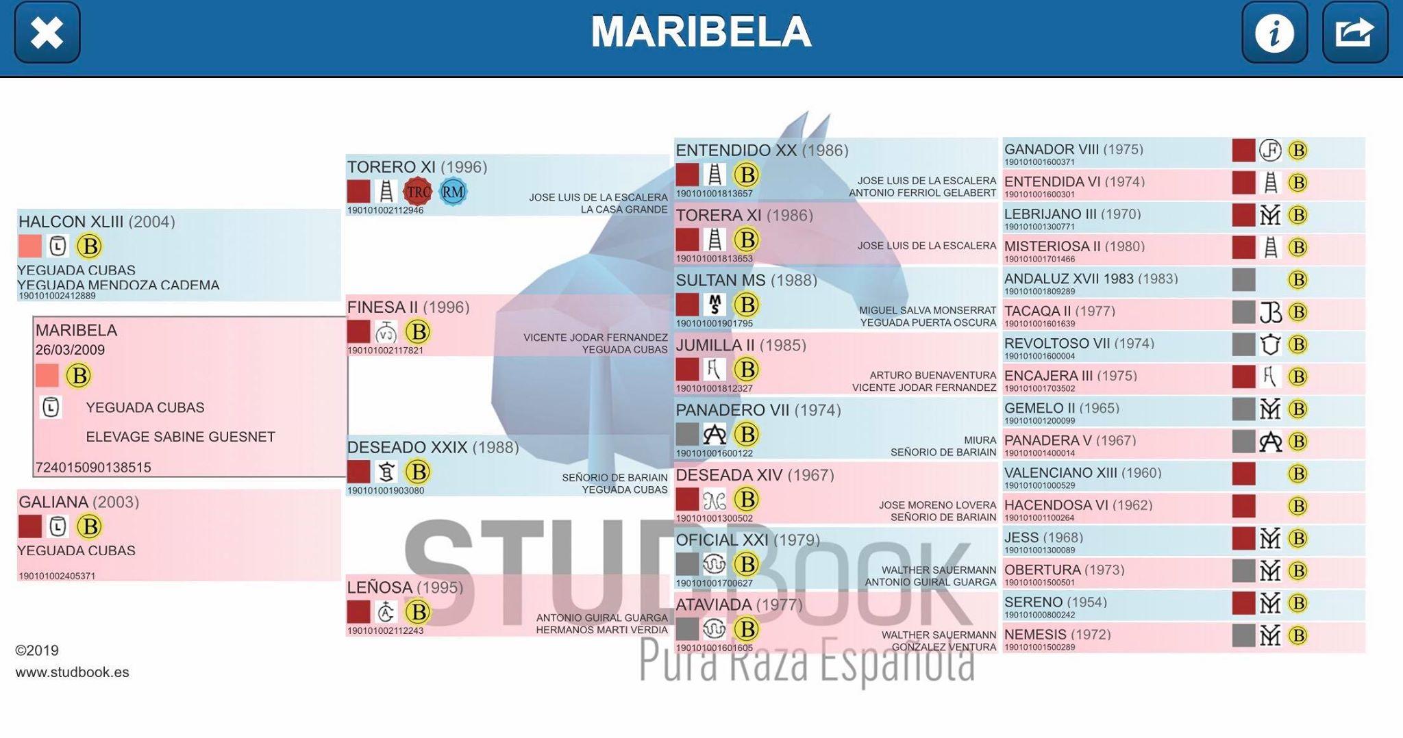 Origines Maribela