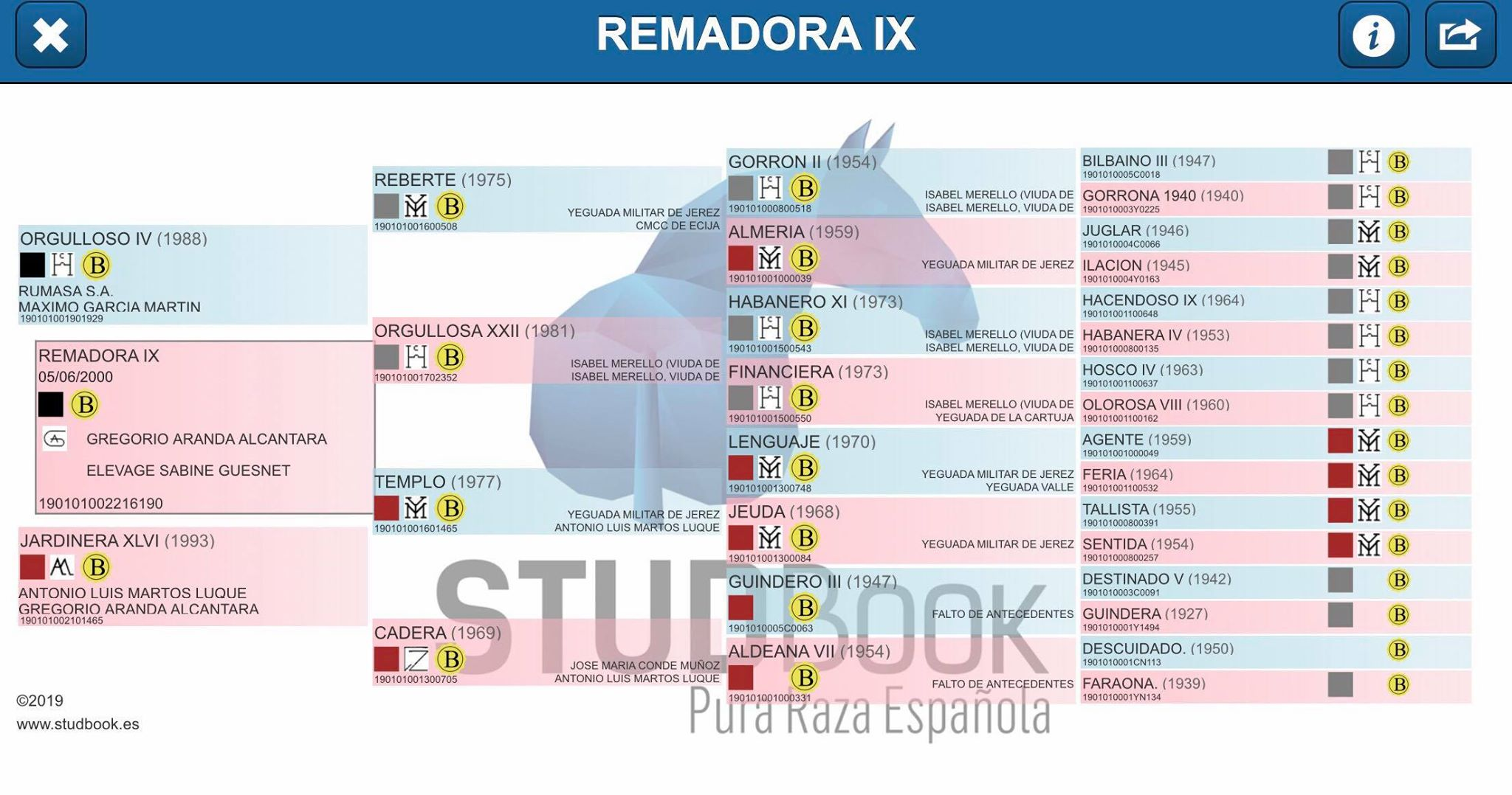 Origines Remadora