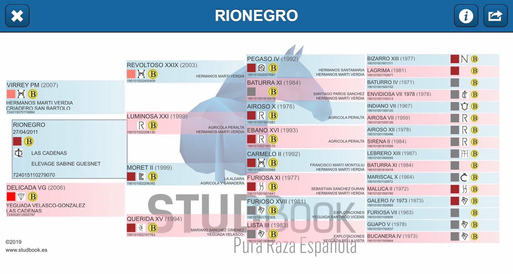 Origines Rionegro