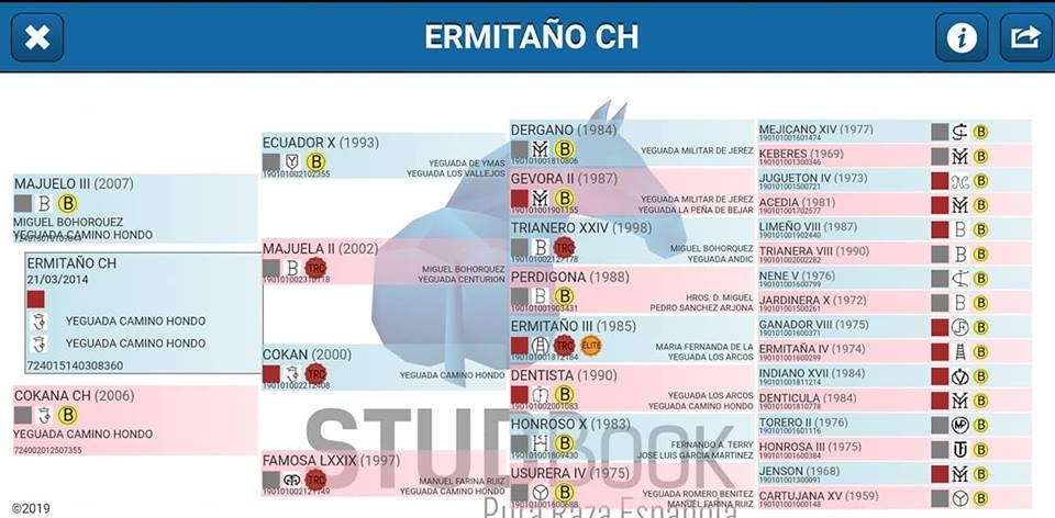 Ermitano Ch