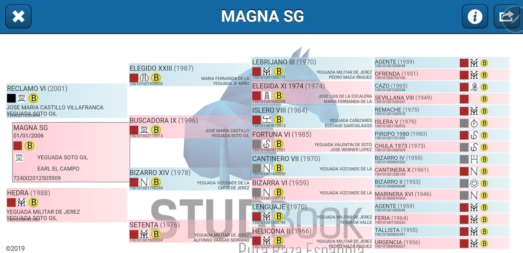 Origines Magna SG