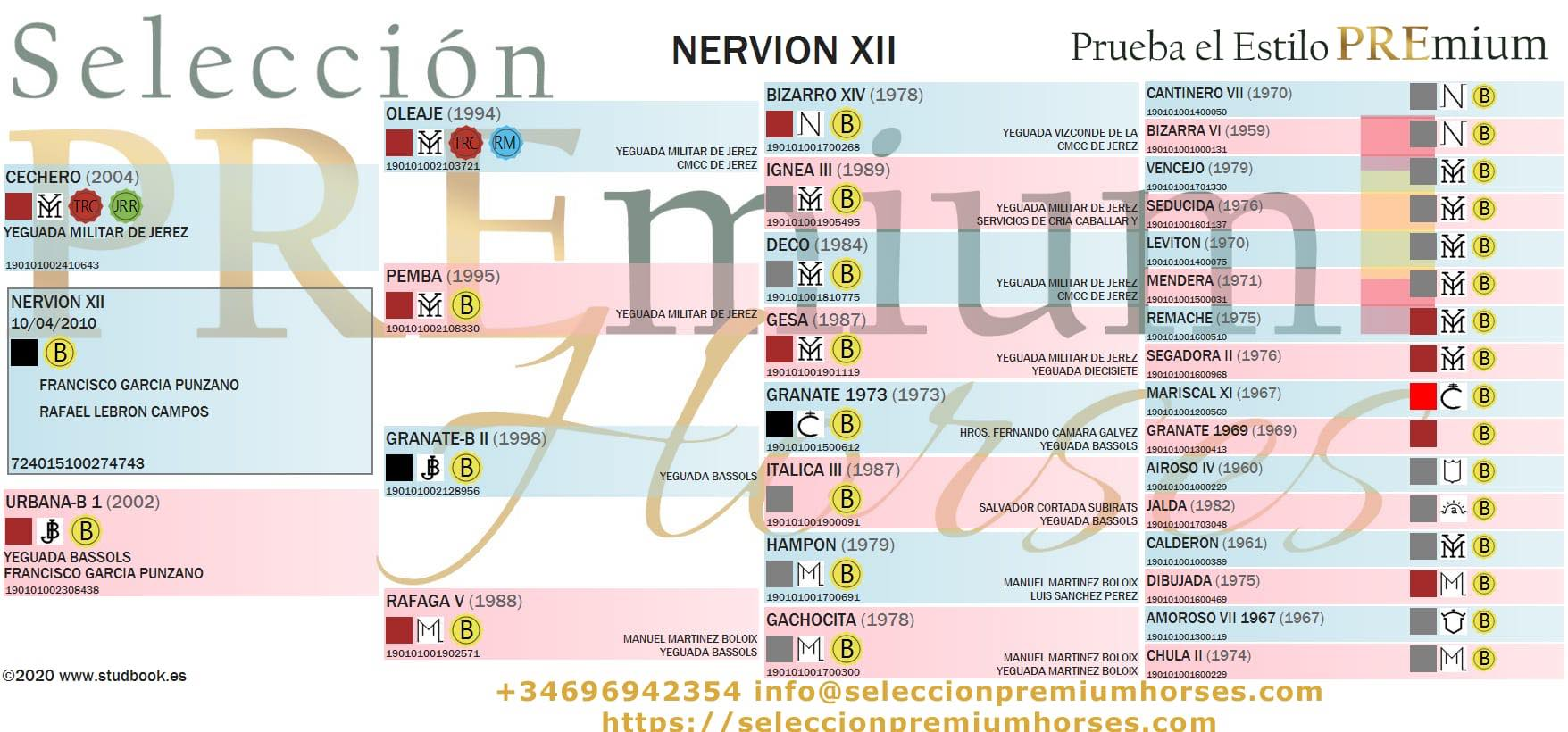 Origines Nervion